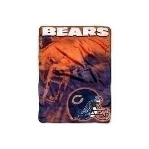 Bears Large Plush Fleece Raschel Blanket 60x80