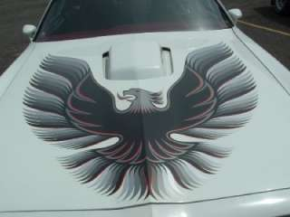 78 79 80 Pontiac Trans Am Blue Red Gold Decals Kit Bird