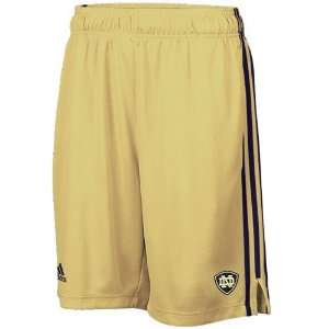 adidas Notre Dame Fighting Irish Gold Big Game Performance Mesh Shorts