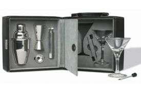 Martini Bar Set with Case Cocktail Shaker Barware Set