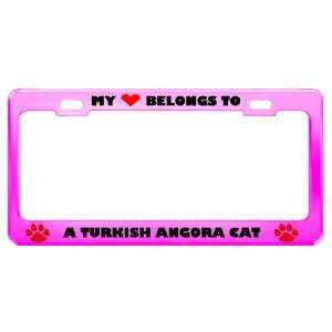 A Turkish Angora Cat Pet Pink Metal License Plate Frame