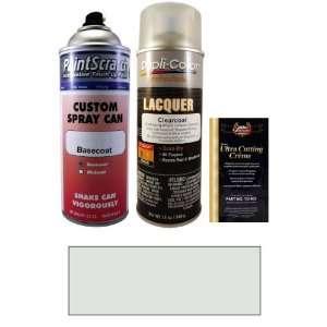 12.5 Oz. Platinum Silver Metallic Spray Can Paint Kit for