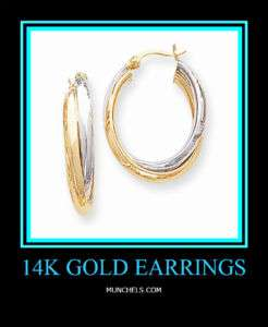 NEW 14K Two Tone Polished Double Oval Hoop Earrings