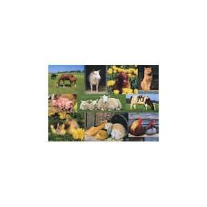 Farm Animals   1000 Pieces Jigsaw Puzzle Toys & Games