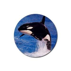 Orca Killer Whale Rubber Round Coaster (4 pack) Kitchen