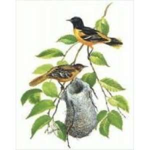 Baltimore Oriole Birds & Nest Counted Cross Stitch Kit