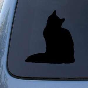 SIBERIAN   Cat   Vinyl Car Decal Sticker #1559  Vinyl Color Black