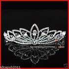 NEW Bridal Wedding Prom Clear Crystal Flower Princess Veil Tiara Crown