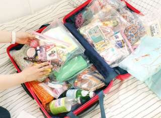 Travel Luggage Suitcase Packing Organizer 16 pcs Zipper Bags Kit