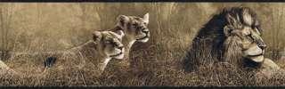 JUNGLE,SAFARI ANIMALS,LIONS wallpaper border SP76463