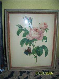CUTE 1940s Shabby Chic Floral Rose + Butterfly Print