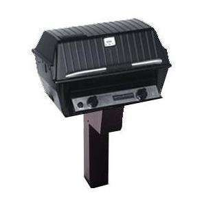R3N Infrared Natural Gas Grill On Black In Ground Post