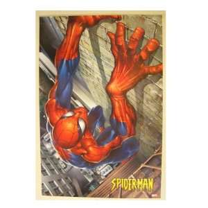The Amazing Spiderman Spider man Poster Climbing wall Home & Kitchen