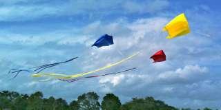 Tal Streeter   Tri Color Leonardo Parafoil Kite Set.